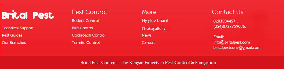 Brital Pest Control - Kenyan experts in pest control and fumigation